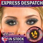 FANCY DRESS ACCESSORIES SILVER AND BLACK EYELASHES